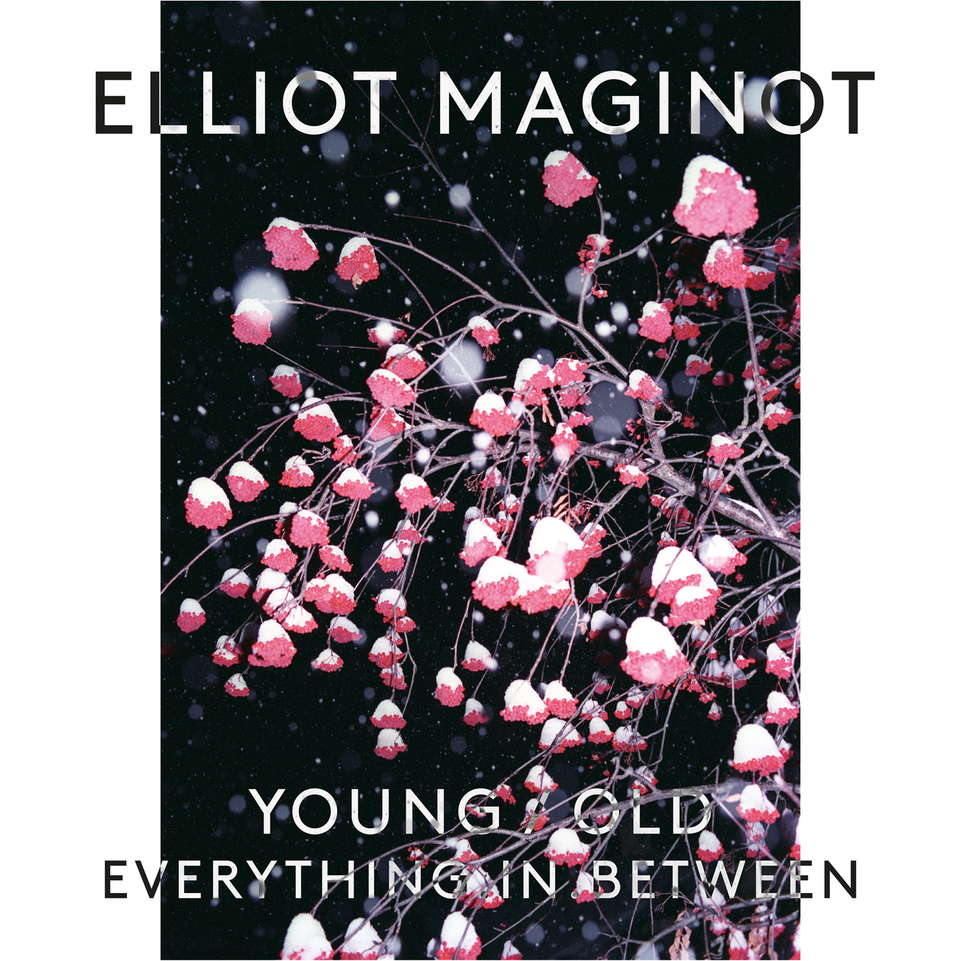Elliot Maginot - Young/Old/Everything.In.Between.